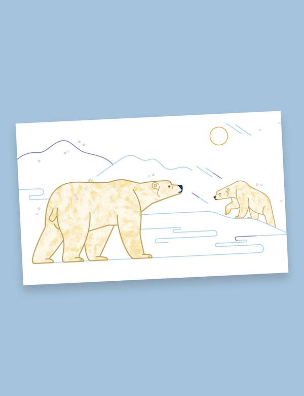 Ex-libris – Suis du doigt l'ours polaire